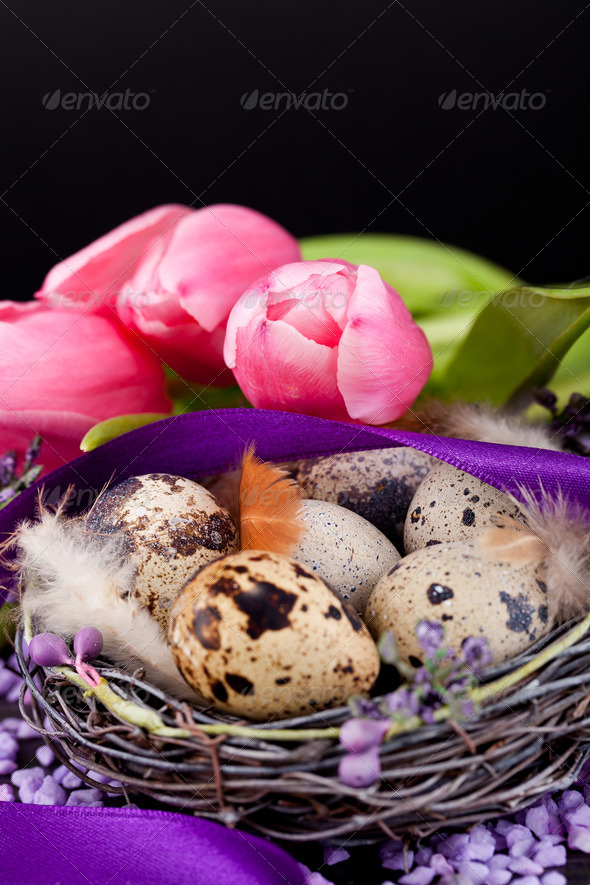 PhotoDune pink tulips and brown eggs with purple ribbon easter decoration 4024102