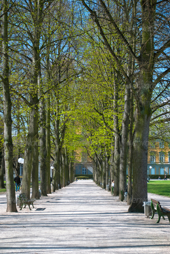 Early Spring in Bonn - Stock Photo - Images