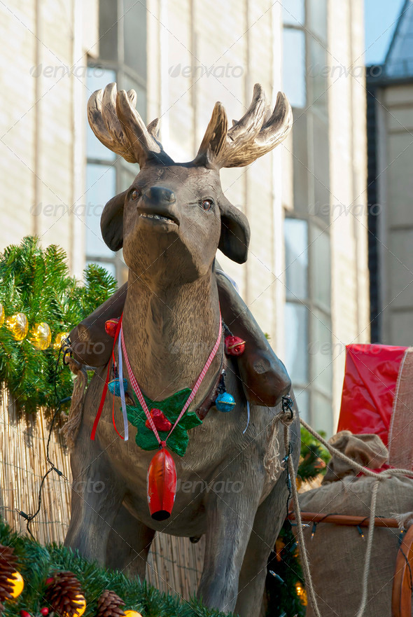 Christmas Deer - Stock Photo - Images