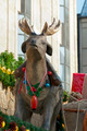 Christmas Deer - PhotoDune Item for Sale