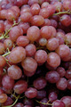 fresh red grapes - PhotoDune Item for Sale