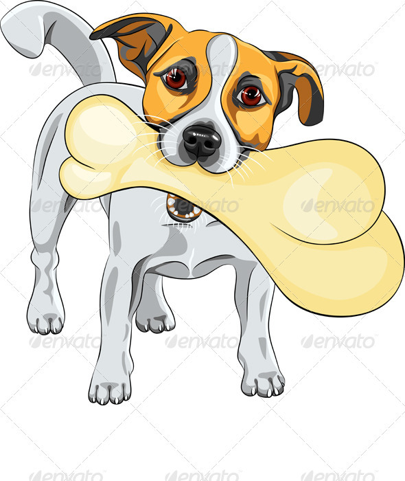 Vector dog Jack Russell Terrier keeps the Bone - Animals Characters