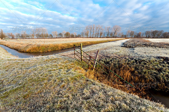 PhotoDune typical Dutch winter landscape 4102097