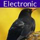 Electro Dub