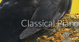 Classical Piano