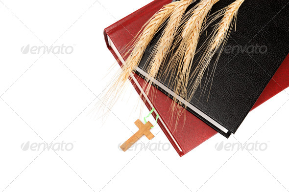 PhotoDune Books Holy Bible and ears of wheat on white background 4049272