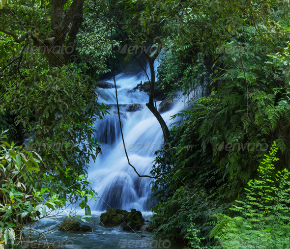 Waterfall in forest - Stock Photo - Images