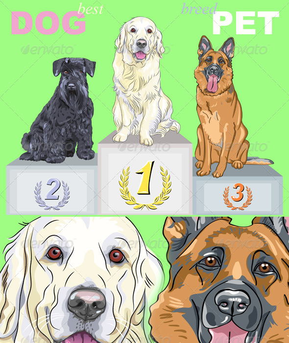 Vector Happy Dog Champion on the Podium - Animals Characters