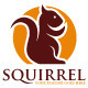 Squirrel Logo Template - GraphicRiver Item for Sale