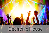 Electronic House