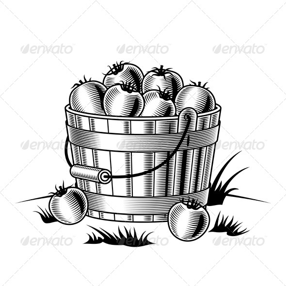 GraphicRiver Bucket Of Tomatoes Black And White 4086567