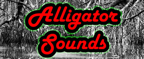 AlligatorSounds