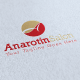 Anarotin Salon Logo Template - GraphicRiver Item for Sale