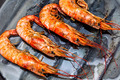 Shrimp grilled - PhotoDune Item for Sale