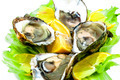 Oysters - PhotoDune Item for Sale