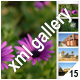ADVANCED XML IMAGE GALLERY _v15 - ActiveDen Item for Sale