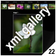 ADVANCED XML IMAGE GALLERY _v22 - ActiveDen Item for Sale