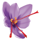 Saffron - GraphicRiver Item for Sale
