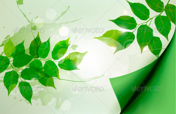GraphicRiver Nature Background with Leaves 4143356