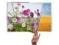 Book of seasons - PhotoDune Item for Sale