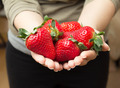Girl hands holding strawberries - PhotoDune Item for Sale