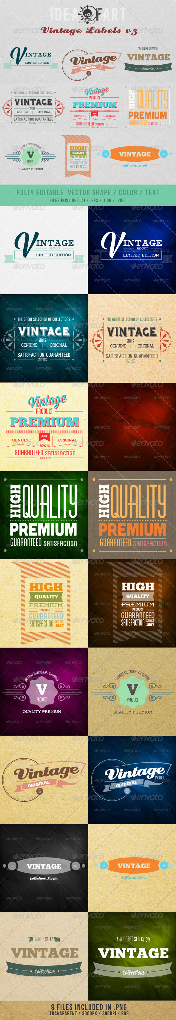 GraphicRiver Vintage Label V3 4185267