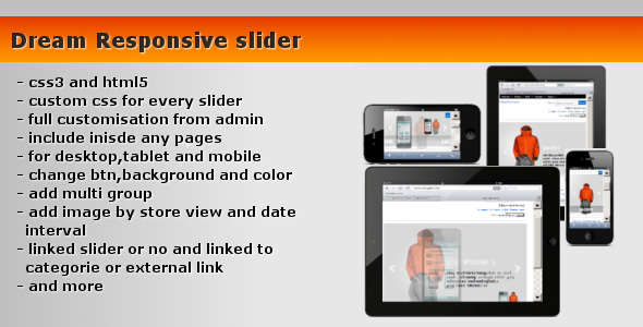 CodeCanyon Easy Responsive Slider 4186663