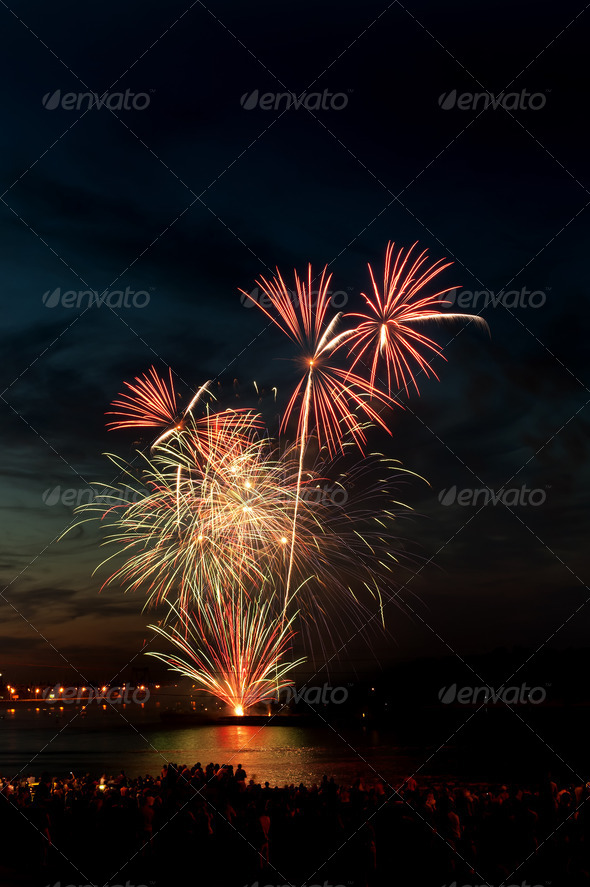PhotoDune Brightly colorful fireworks in the night sky 4213843