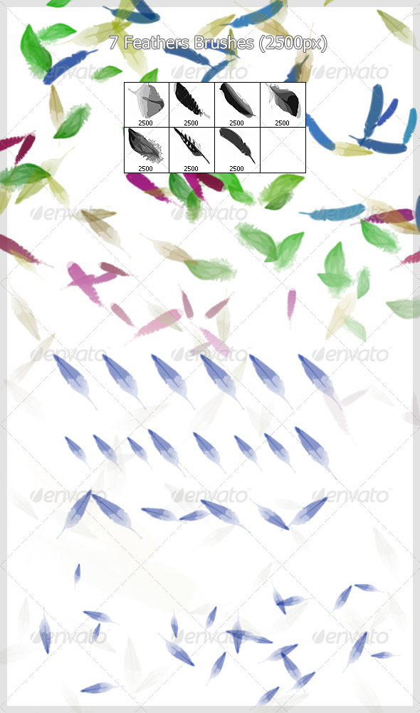 GraphicRiver 7 Feathers Brushes 2500px 4221510