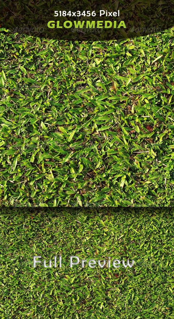 GraphicRiver Grass 4223872