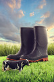 Rubber boots in grass with toy cow - PhotoDune Item for Sale