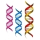 DNA Elements - GraphicRiver Item for Sale