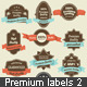 Vintage Premium Quality and Satisfaction Guarantee - GraphicRiver Item for Sale