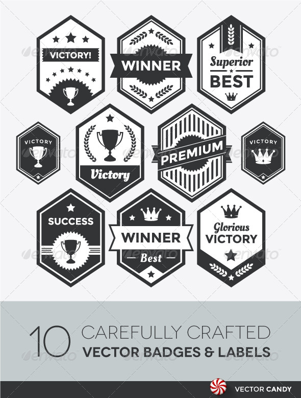 GraphicRiver Premium Vector Badge and Modern Label Collection 4256101