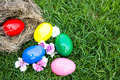 Easter eggs in nest on green grass - PhotoDune Item for Sale