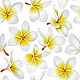 Tropical Flowers Seamless Pattern - GraphicRiver Item for Sale
