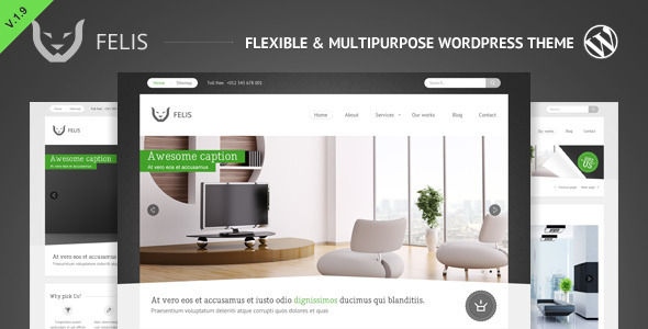 Felis - Flexible &amp; Multipurpose Wordpress Theme - Business Corporate