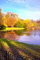 Lake in the park - PhotoDune Item for Sale