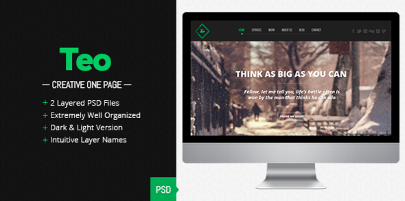 ThemeForest Teo Single Page PSD Template 4258018