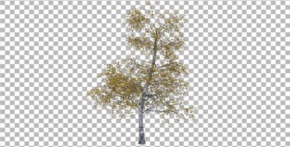 3DOcean Tree 4286740