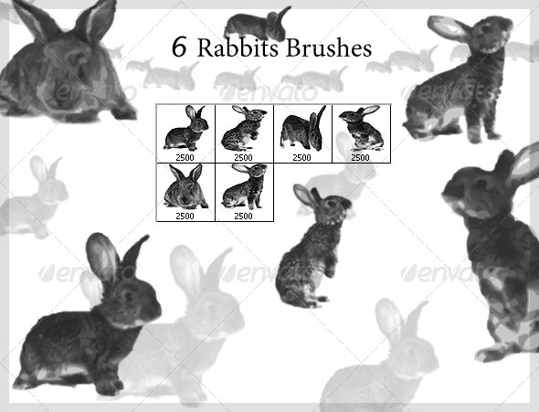 6 Rabbits Brushes (2500px) - Brushes Photoshop