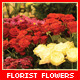 Florist Flowers - VideoHive Item for Sale