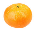 One full fruit of orange tangerine - PhotoDune Item for Sale