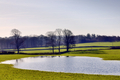 View of a flooded field and trees - PhotoDune Item for Sale
