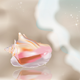 Shell on the Beach - GraphicRiver Item for Sale