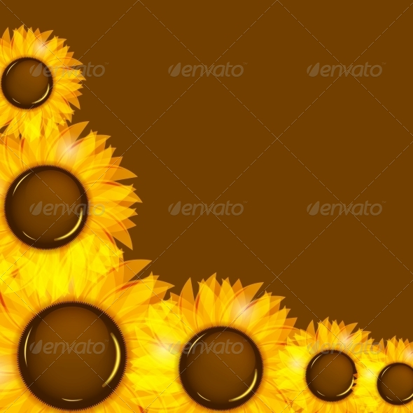 GraphicRiver Sunflowers Vector Illustration Background 4312508