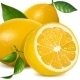Fresh Lemons with Leaves - GraphicRiver Item for Sale
