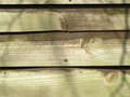 weathered panels - PhotoDune Item for Sale