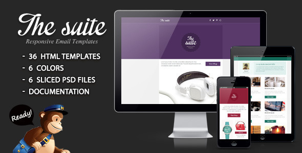 ThemeForest The suite Responsive Email Template 4325269