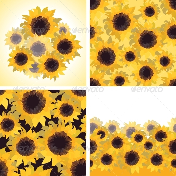 GraphicRiver Sunflower Patterns and Backgrounds 4329304
